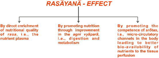 The three dimensional effect of rasayana